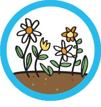 compostagem-03-aplic-compost